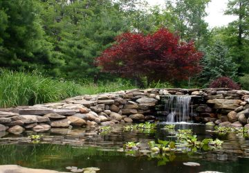 Waterfall with pond